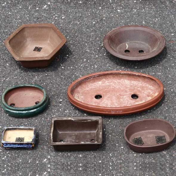 Fungsi dari Pot Bonsai